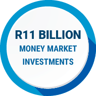 treasury-one-in-money-market-investments-south-africa-11bn